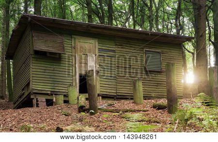 Lost Place - Old abandoned and dilapidated hut in a forest