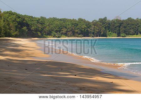 Beach line Indian ocean. Sand, tree, forest Clean blue lagoon