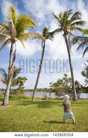 Toddler taking first steps in a tropic park. Cute little boy learning to walk outside in a grassy park near the lake. Small child walking on the grass near palms.