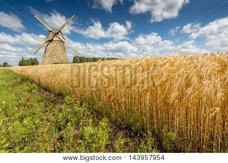 Field with ripening wheat and medieval windmill, Europe