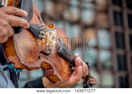 Mariachi Violinist