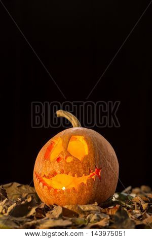 Jack-o-lantern On A Black Background