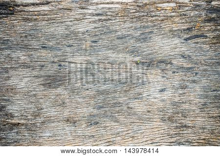 Nature Design Of Dark Wood Texture Background