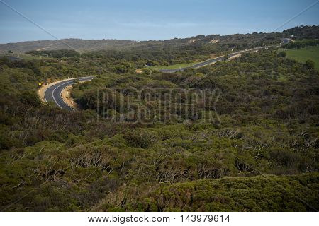 Winding road through green forest landscape of the Great Ocean Road famous route for road trip in Victoria Australia