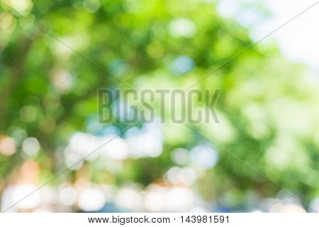Abstract Blurred Car In Parking Lot Of Green Nature