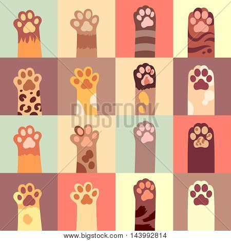 Cat s paw flat icon set in different color. Vector illustration