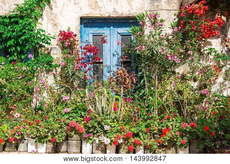 Flowers, ornamental plants and greenery at a house in Paleochora in the south-west of Crete. The village is situated on a headland. The citizens of the village decorates all the homes