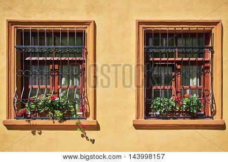 Windows with Flowers on the Yellow Wall