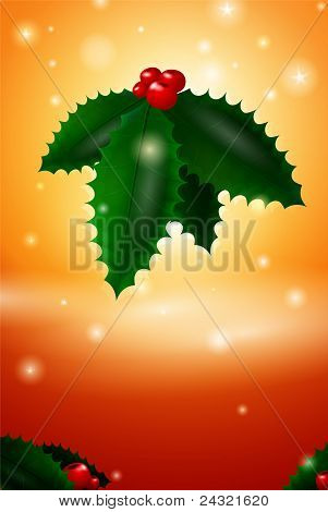 Vector Christmas Mistletoe Card Illustration