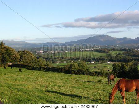 Irish Country
