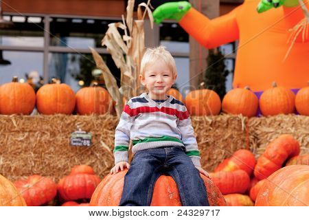 Toddler At The Pumpkin Patch