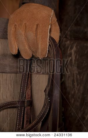 Glove And Bridle