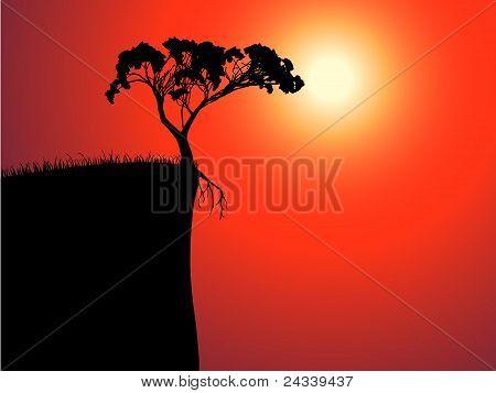 única árvore solitária à beira