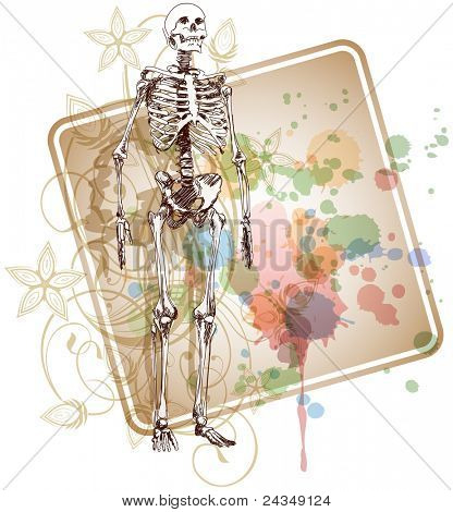 Skeleton sketch & floral calligraphy ornament - a stylized orchid & color paint background. Bitmap copy my vector ID 71330059