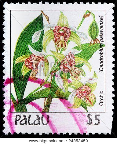 A 4-dollar Stamp Printed In Palau