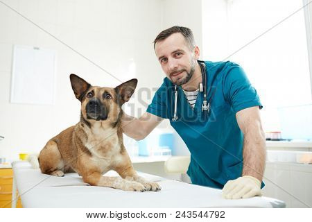 Young veterinarian and one of
