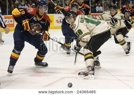 Liga de Hockey de Ontario - Londres Vs Erie