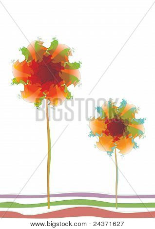 Two transparent flowers pattern
