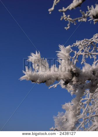 Ice Needles