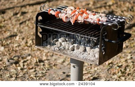 Autumn Barbecue In The Park