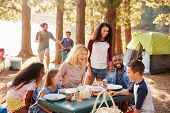 Family With Friends Camp By Lake On Hiking Adventure In Forest poster