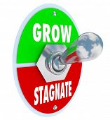 pic of stagnation  - A metal toggle switch with the lever lifted up into Grow position as opposed to down into Stagnate - JPG