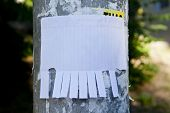Blank White Paper With Tear Off Tabs poster