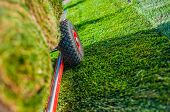 Creating New Grass Field In The Garden. Natural Turf Grass On The Moving Cart Closeup Photo. Landsca poster