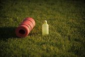 Sport Equipment. Mat And Plastic Bottle On Green Grass, Gym Equipment. Thirst, Dehydration, Drinking poster