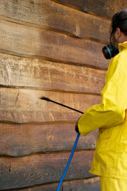 picture of pressure-wash  - a man doing a chemical wash on the side of a garage - JPG