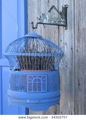 Birdcage and lavender