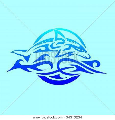 Maori Dolphin