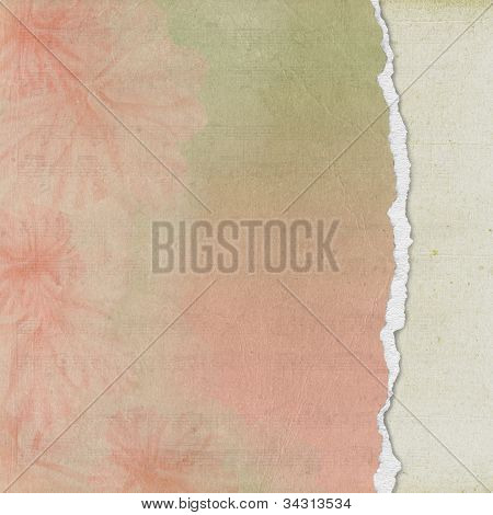 soft floral torn page