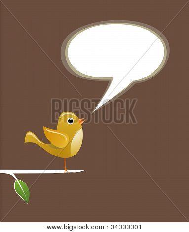 Social Media Bird Speech Love