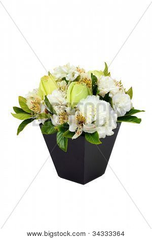 Roses in a black vase isolated on white background