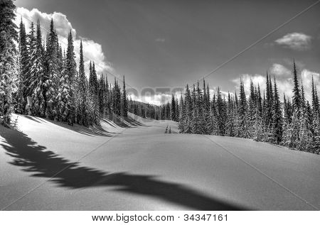 Kootenay Winter