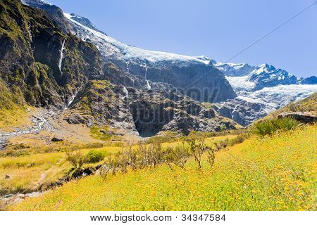 Rob Roy Glacier in Mt Aspiring NP Southern Alps NZ