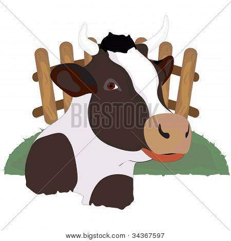 Vaca manchada detrás de una valla