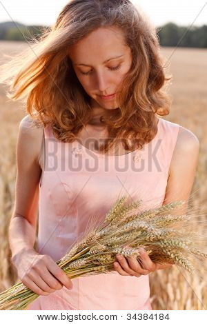 Young Woman With Ripe Spikelets Of Wheat In The Hands In The Field