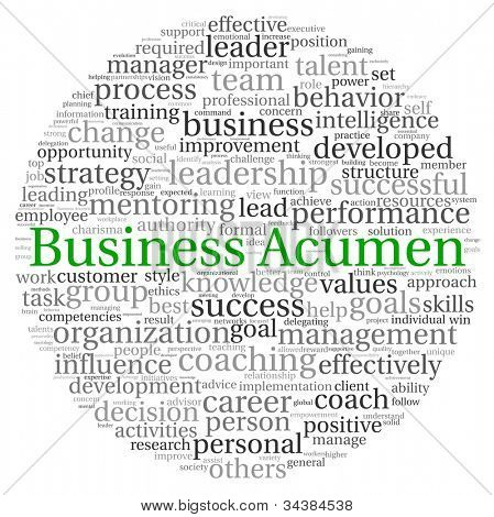 Business Acumen concept in word tag cloud on white background