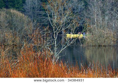 Canoeing In Wetland