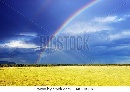 Rainbow Over Field