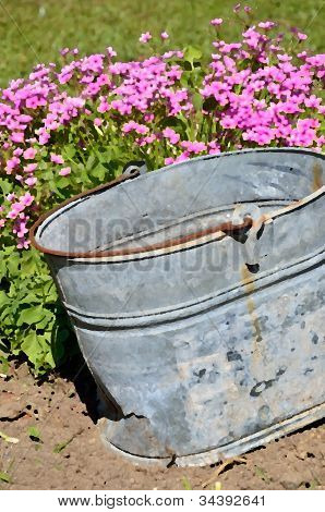 Antique pail adds country charm to a garden