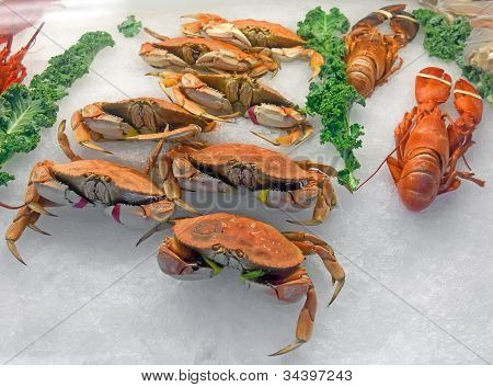 Snow Crabs And Lobsters On Ice