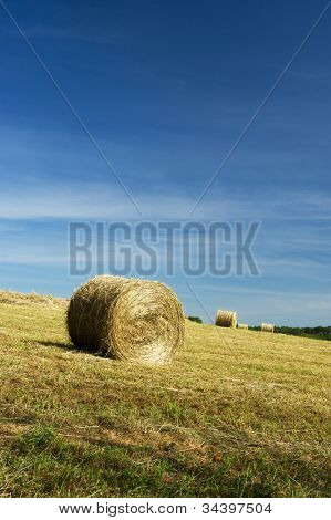 Rolls hay in agriculture landscape