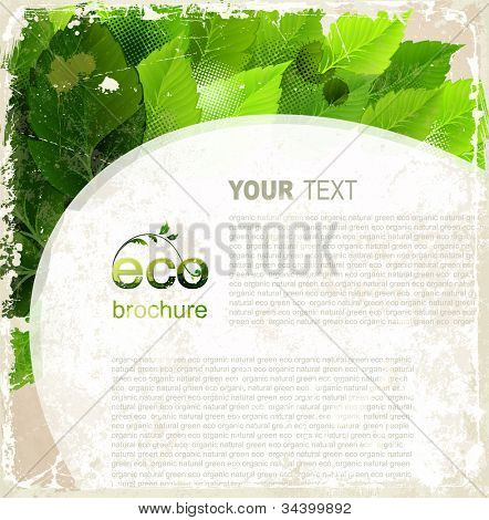 Eco brochure, oval frame with green leaves on the vintage background