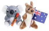 stock photo of didgeridoo  - Soft Toy Koala on Isolated White Background - JPG