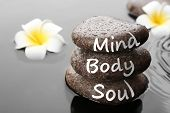 Spa Stones With Words Mind, Body, Soul And Plumeria Flowers In Water, Closeup. Zen Lifestyle poster