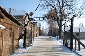 picture of auschwitz  - Auschwitz concentration camp gate with snow and blue sky - JPG