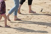 Child Feet, Woman Feet And Man Feet Barefoot Walking On The Sand Beach poster